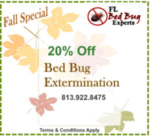 Fall Special Coupon