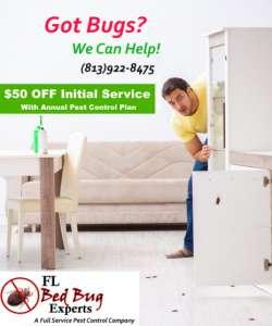 $50 OFF Pest Control Service